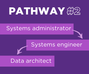 Data architect pathway 2