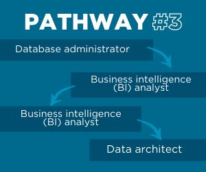 Data architect pathway 3