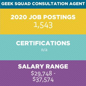 Geek Squad Consultation Agent V2
