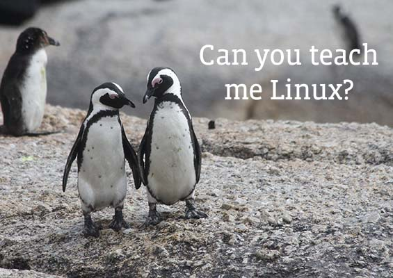 How to Learn Linux