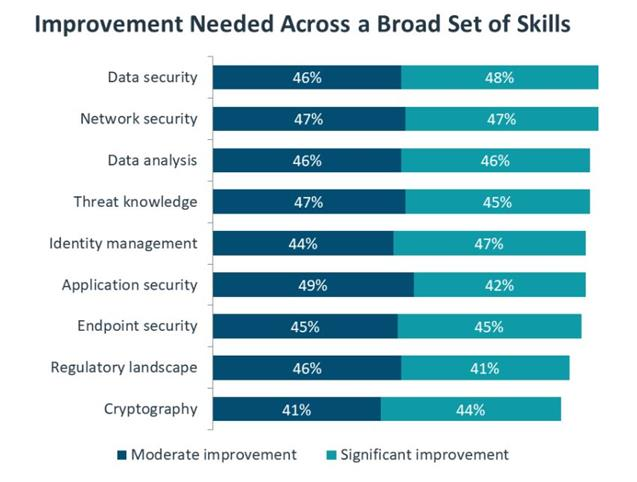 Improvement needed for cyber skills
