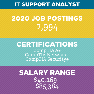IT Support Analyst  V2