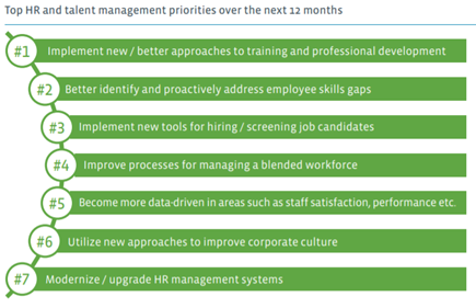 A graph of the top 7 HR priorities over the next 12 months
