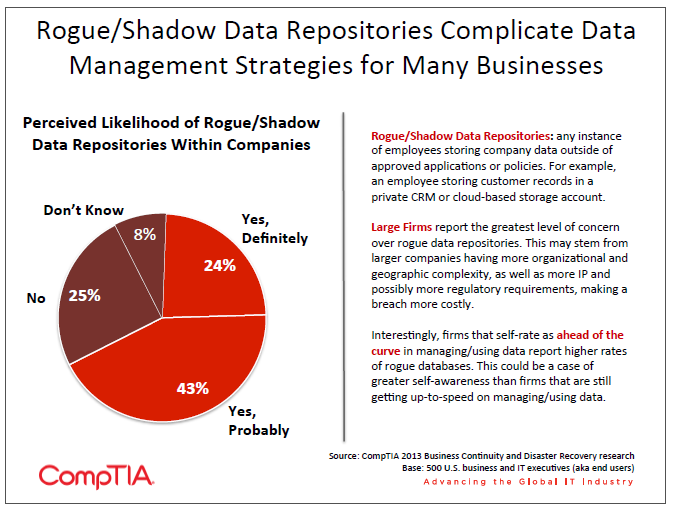 Rogue Shadow Data Repositories Complicate Data Management Strategies for Many Businesses