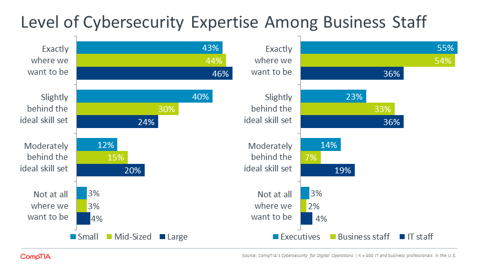 Level of Cybersecurity Expertise Among Business Staff