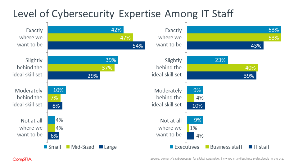 Level of Cybersecurity Expertise Among IT Staff