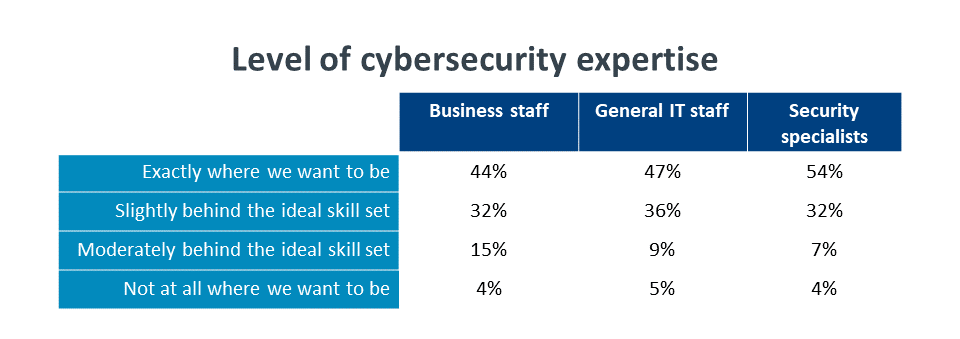 Level of cybersecurity expertise