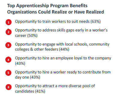 Top Apprenticeship Program Benefits Organizations Could Realize of Have Realized