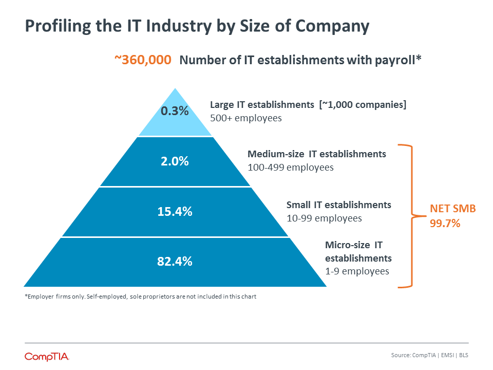Profiling the IT Industry by Size of Company