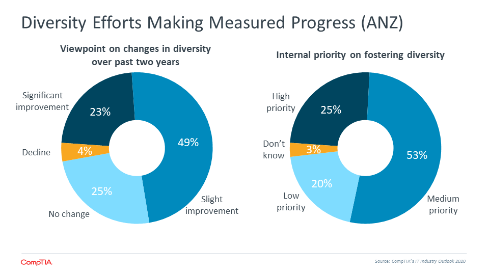 Diversity Efforts Making Measured Progress (ANZ)