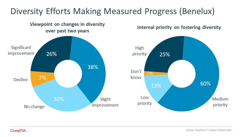 Diversity Efforts Making Measured Progress (Benelux)