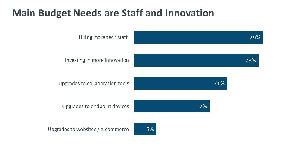 Main Budget Needs are Staff and Innovation