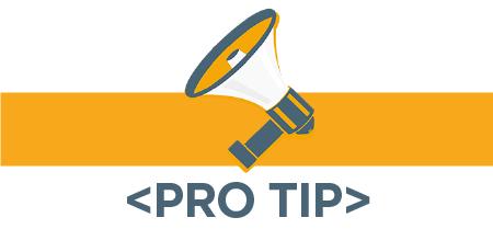 Bullet_ Pro Tips IRP