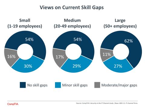 Views on Current Skill Gaps