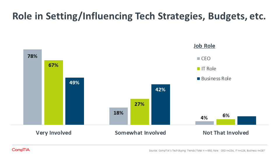 Role in Setting Influencing Tech Strategies, Budgets, etc.