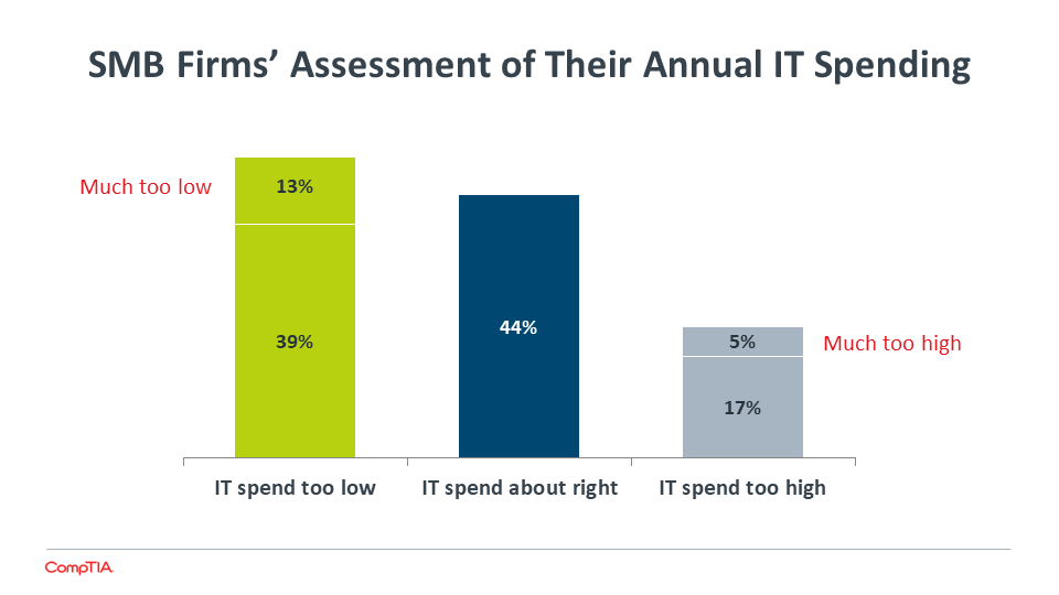 SMB Firms' Assessment of Their Annual IT Spending
