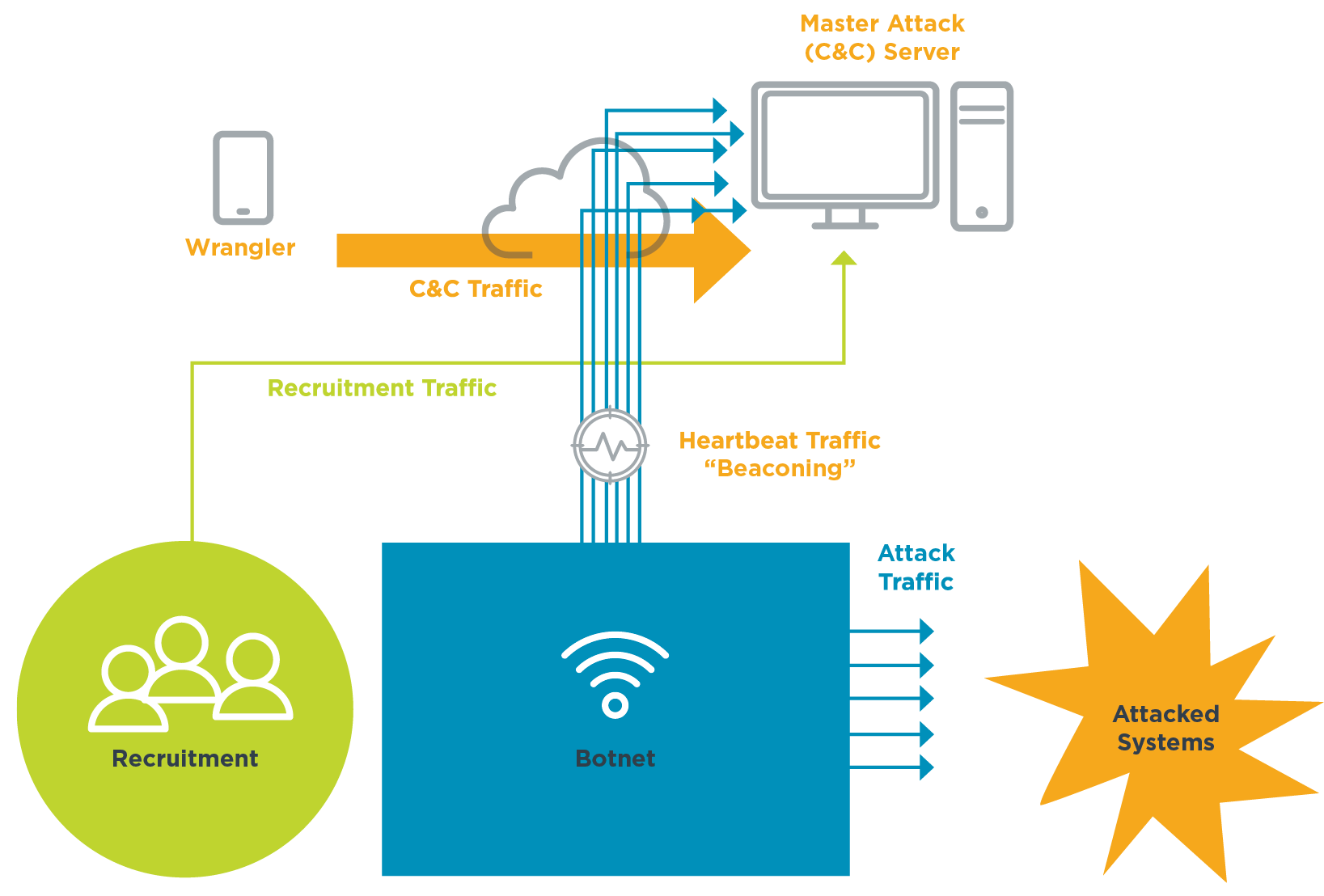 A diagram of a DDoS attack, showing recruitment, the Botnet and attack traffic, beaconing, command and control (C&C) traffic from the wrangler and the master C&C server.