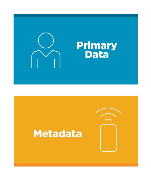 Primary Data vs Metadata